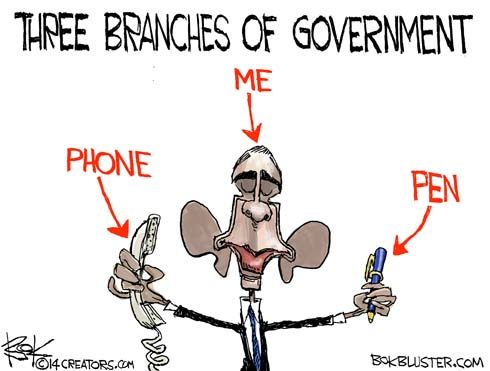 140129-three-branches-separation-Powers-cartoon