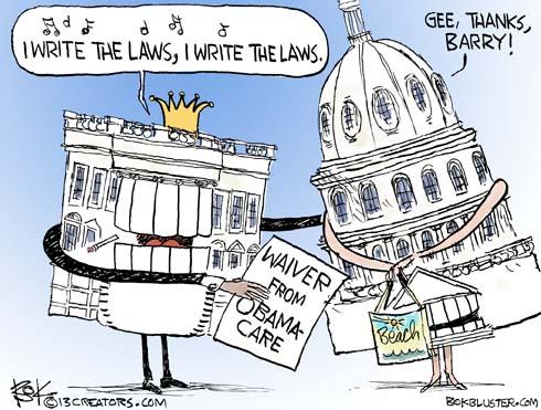 130805congress-obamacare-cartoon
